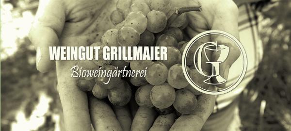 Grillmaier Probierpaket MIX