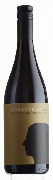 Ried Schüttenberg Pinot Noir