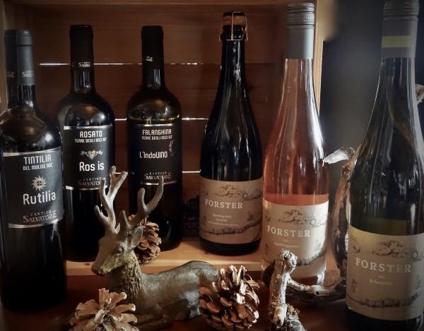 Weingut Forster und Cantine Salvatore MIX Paket